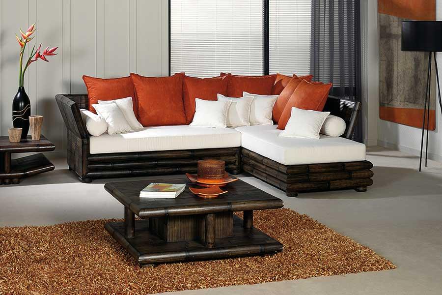 Table basse bambou wenge avec coffre bar tao 2383 for Salon bambou