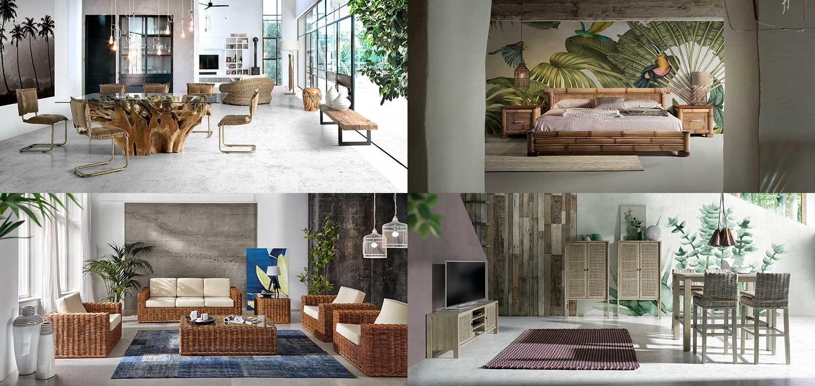 Nos nouvelles collections 2019 - Édito