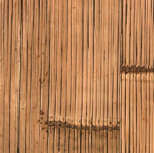 Bambou miel antique